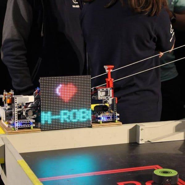 P-M Robotic