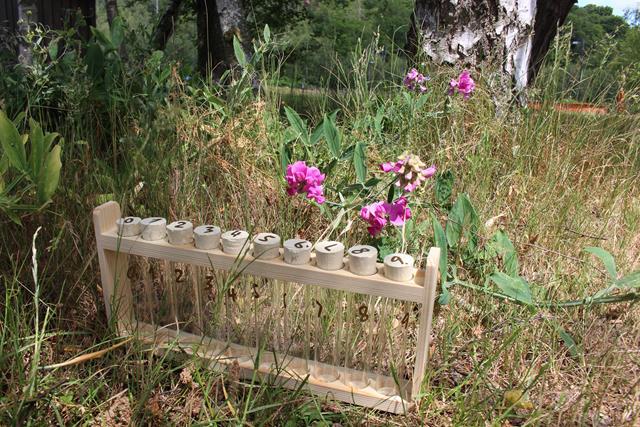 Atelier été - pré-fleuri