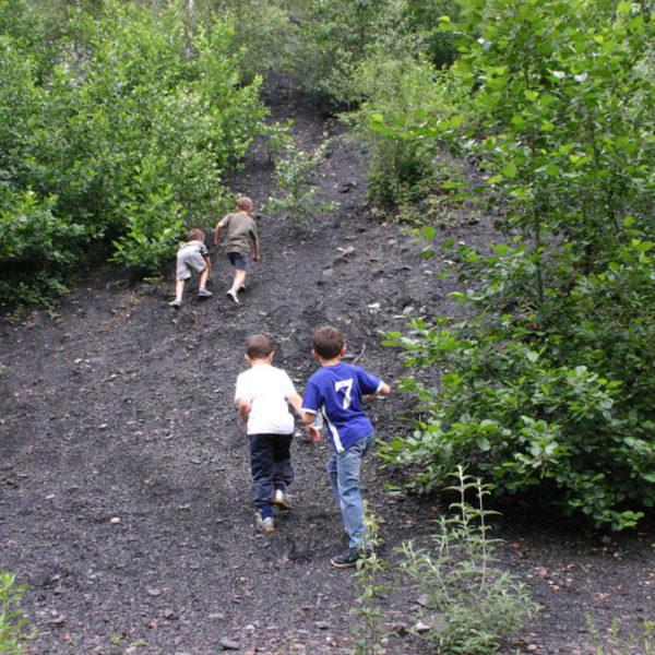 Enfants en balade sur le terril du Pass
