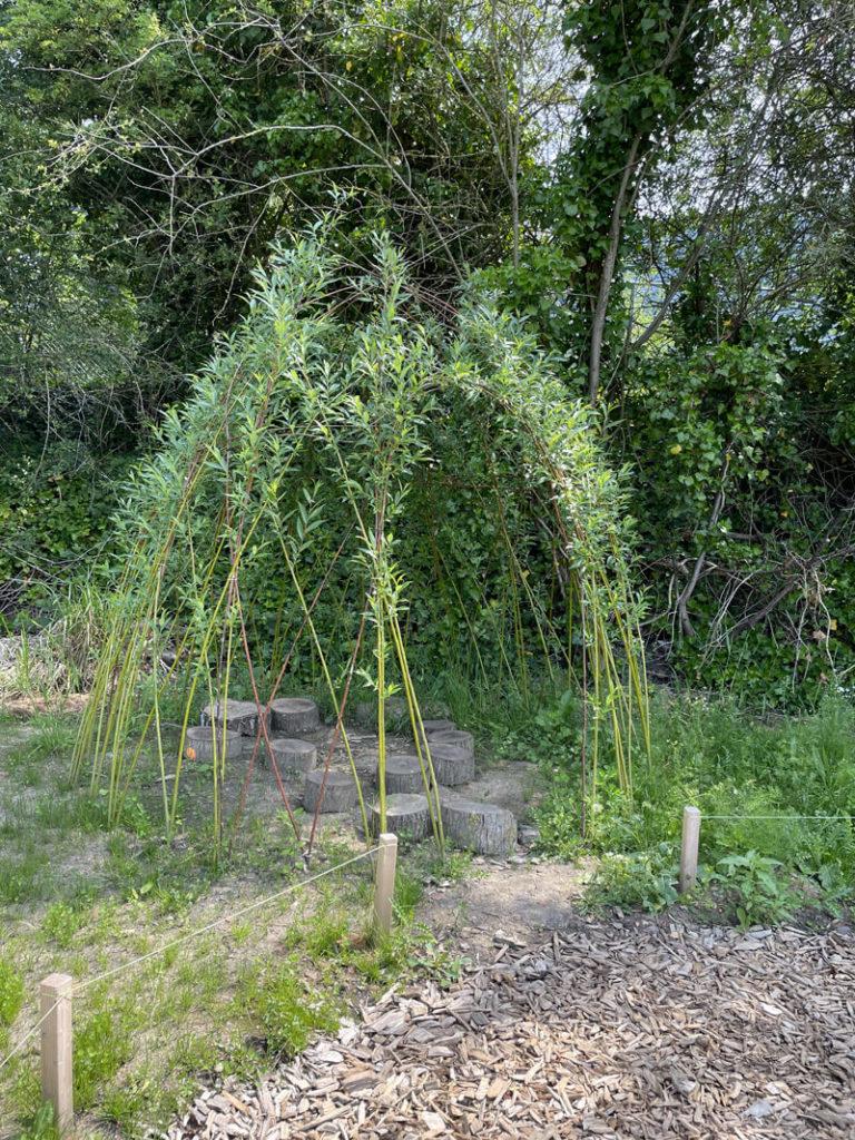 Cabane en saule dans le Jardin de la Biodiversité