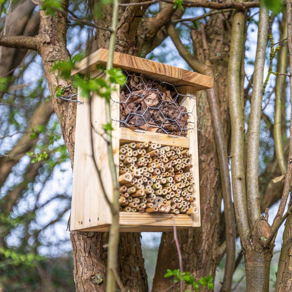 Hôtel à insectes suspendu à un arbre dans le Jardin de la Biodiversité