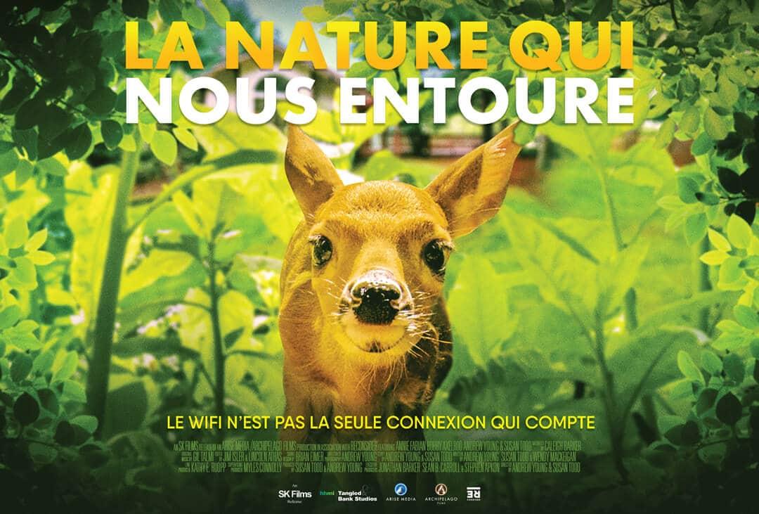La nature qui nous entoure : film affiche