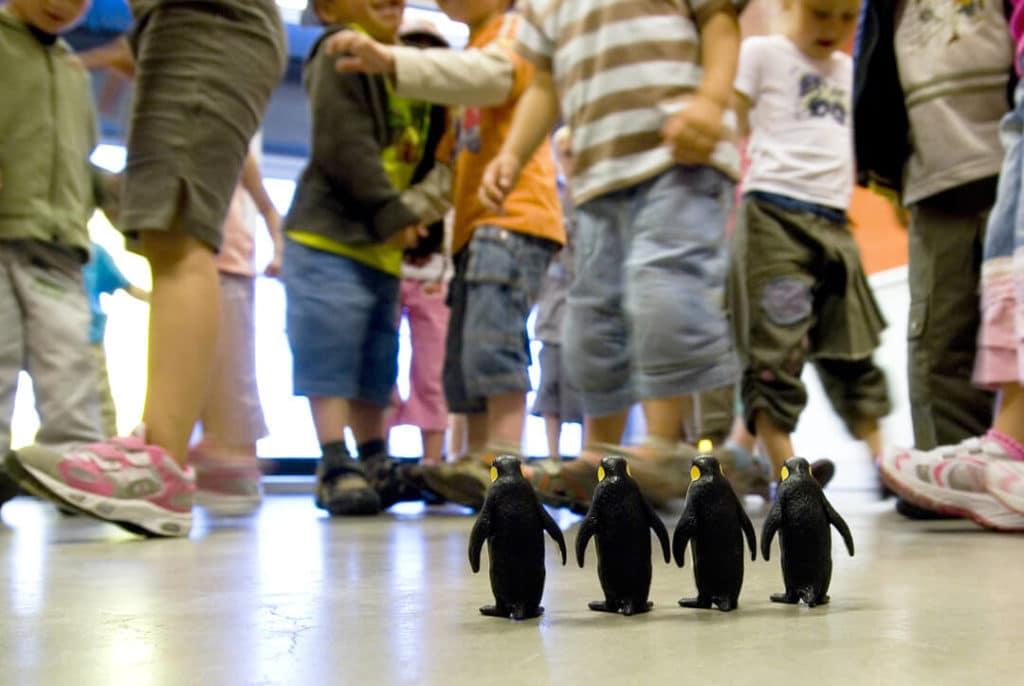 Figurines de manchots et enfants qui miment leur marche